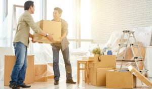 Removalist Bayswater